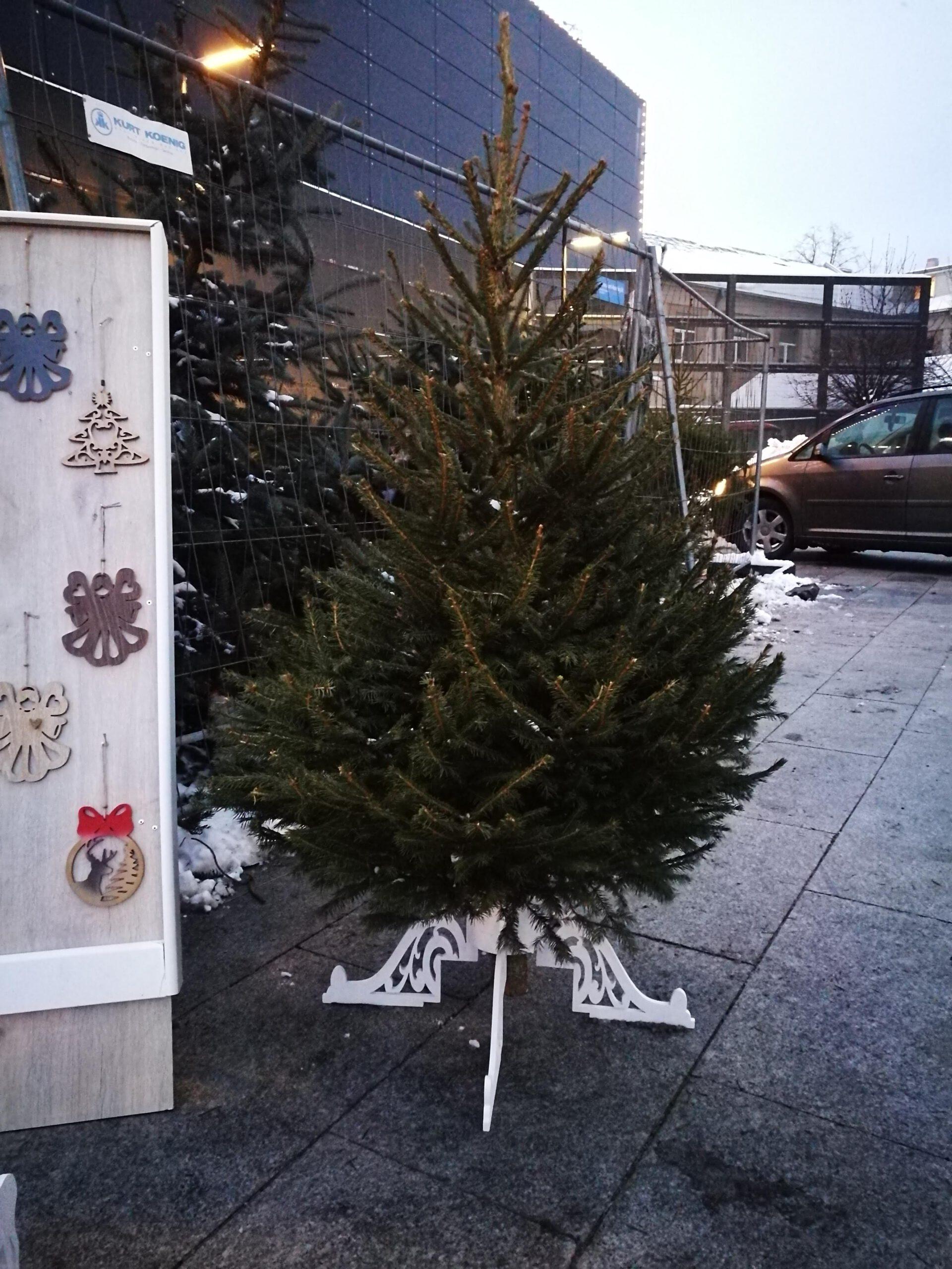 Stovas Kalėdų Eglutei